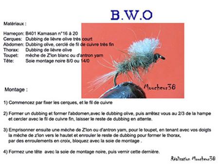 BWO fiche web1.jpg