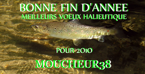 voeux-2010.jpg